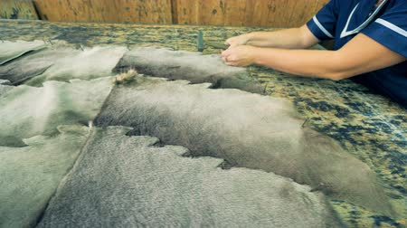 skins : Large pieces of furred material are getting nailed to a list of plywood