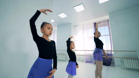fegyelem : Little girls are doing ballet exercises with their lady teacher