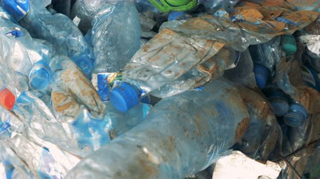 reutilizável : Crushed plastic bottles, close up. Stock Footage