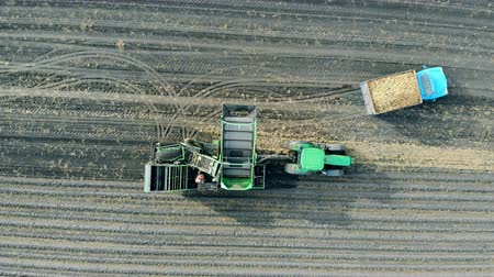 tillage : An empty tractor standing on a field, top view.