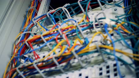 поставщик : Many multicolored cables in a server room, close up.