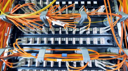 provider : Slots of data servers with a lot of wires plugged into them Stock Footage
