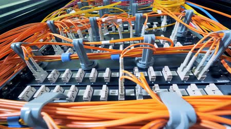 linked : Slots of servers with orange wires plugged into them