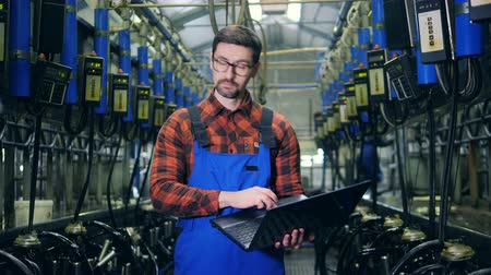 inspector : Milking machines and a male expert making calculations on a laptop Stock Footage