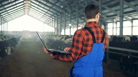 üreten : Agriculturist is walking along the byre with a laptop