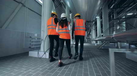 drink industry : Engineers in uniform walking at a brewery, back view.