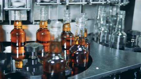 distillation : Empty and full beer bottles are moving along the industrial conveyor Stock Footage