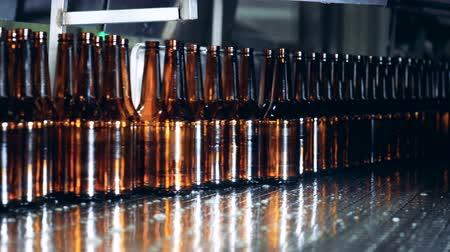 unfilled : Empty glass bottles are moving along the conveyor belt