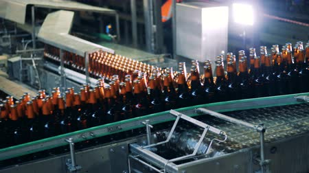 cleaning products : Bottles filled with beer are being transported upwards Stock Footage