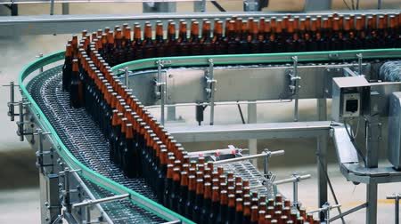 functioning : Beer bottles made of glass are moving along the conveyor belt Stock Footage