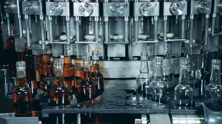 distillation : Special machine filling bottles with alcohol. Whiskey and brandy distillery Stock Footage