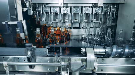 distillation : One machine filling bottles with alcohol. Whiskey and brandy production line.