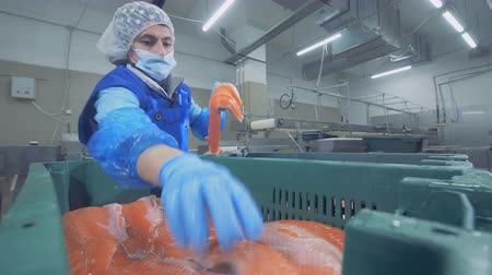 skins : Female factory worker is putting together trunks of salmon