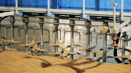 microbrewery : Grain milling at a factory, close up.