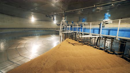 microbrewery : Metal machine drying seed at a warehouse. Malt processing equipment at malt plant, brewery.