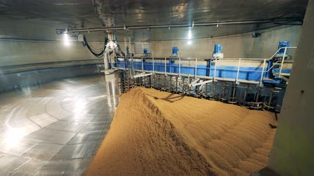 microbrewery : Warehouse equipment working with crops. Treatment of malt at a brewery.