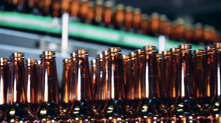 пивоваренный завод : Glass bottles moving on a line at a brewery, close up. Стоковые видеозаписи