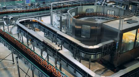 wort : Factory facility interior. Many bottles going on a line at a brewery, top view.