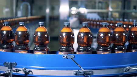 labeled : Revolving conveyor belt is transporting beer bottles