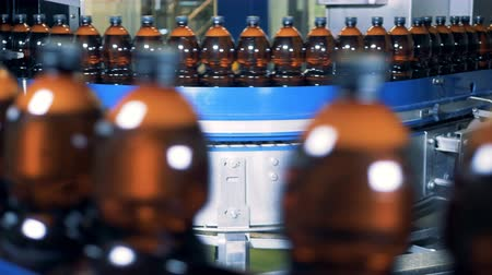 labeled : Plenty of beer bottles are moving along the industrial transporter Stock Footage