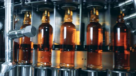pálinka : Full bottles with alcohol on a working machine at a factory. Whiskey, scotch, bourbon production.