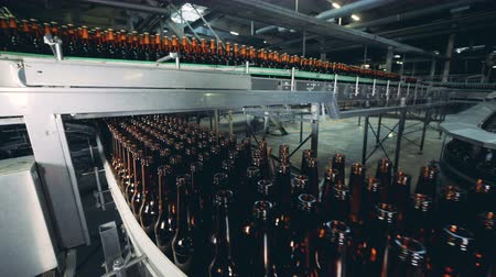 пивоваренный завод : Glass bottles going on a brewery line, close up.