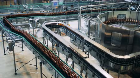 maltês : Brewery conveyors work, moving bottles, top view. Stock Footage