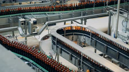 mout : Full bottles with beer on brewery conveyors, top view.
