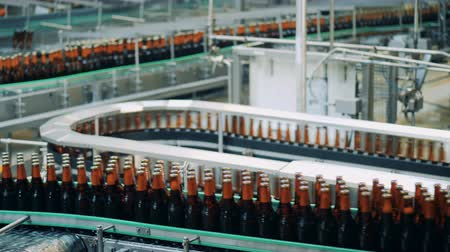 bira fabrikası : Automated conveyors move beer bottles, close up.
