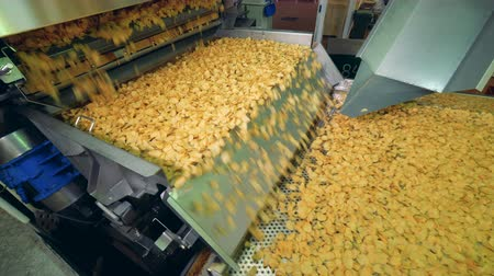 ropogós : Dried potato chips moving on a factory conveyor in a food production facility.