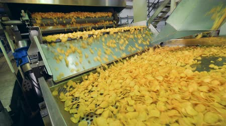 szállító : Yellow chips cooked at a factory, moving on a food production conveyor. Stock mozgókép
