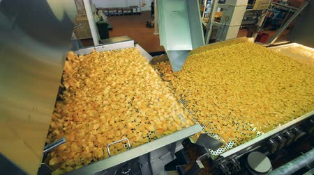 крахмал : Modern factory conveyor moves fried potato chips in a food facility.