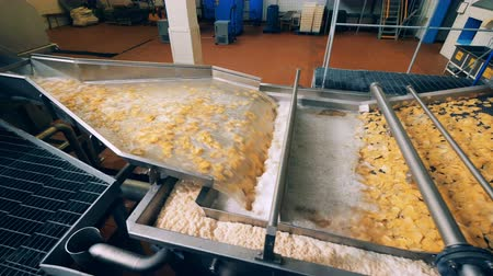 crocante : Chips production at a food factory, modern conveyor in work.