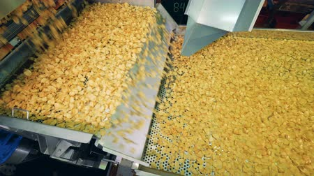 mechanically : Potato chips production. Factory transporter is relocating potato crisps