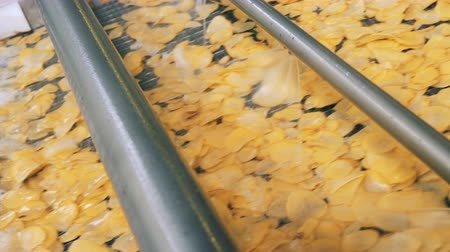 kusy : Industrial machine is spraying crisps with oil