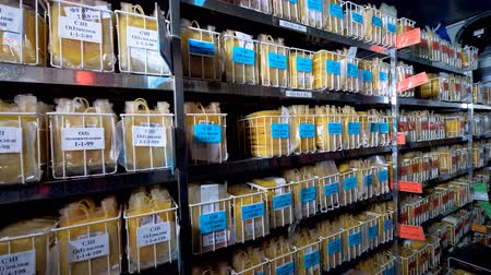 patienten : Plasma bank with plenty of samples in plastic bags