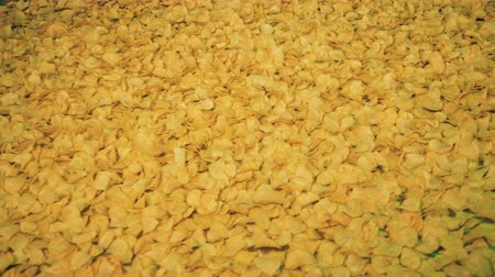 でんぷん : Potato chips moving on industrial conveyor at a factory.