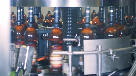purificado : Bottles filled with beer are rotating in a factory machine