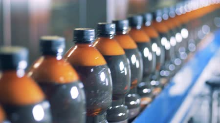 inventario : Plenty of plastic bottles filled with beer are moving along the conveyor belt Archivo de Video
