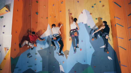 bouldering : Group of people are climbing a wall in a bouldering gym