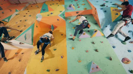 climbed : Training wall is getting climbed by a group of people Stock Footage