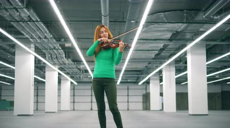 bronz : Woman is playing the violin in the storage unit
