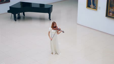 ヴィオラ : Spacious hall with a woman playing the violin in it