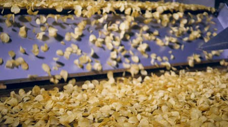 крахмал : Lots of fried crisps fall from metal conveyor at a food production factory, slow motion.