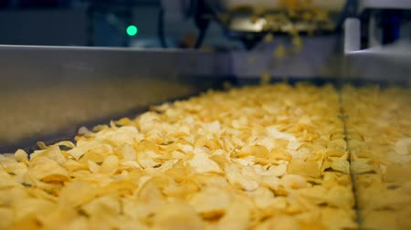 крахмал : Sorted chips moving on a factory line in a food facility, slow motion. Стоковые видеозаписи