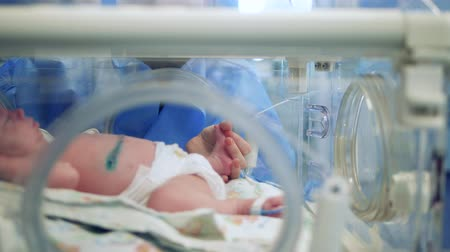 intensive care unit : A person is touching leg of a baby in the incubator Stock Footage