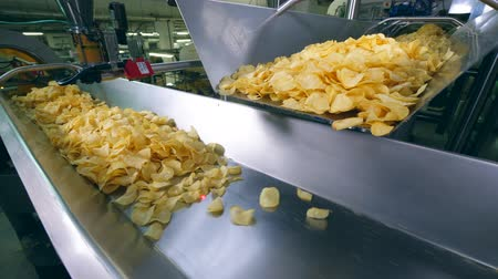processed : Metal conveyor is relocating piles of fried chips