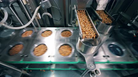 kraker : Plastic plates are getting filled with bread crumbs mechanically. Food factory equipment. Stok Video