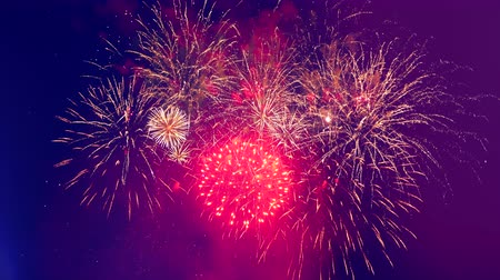 radiante : Multicolour fireworks are illuminating the sky
