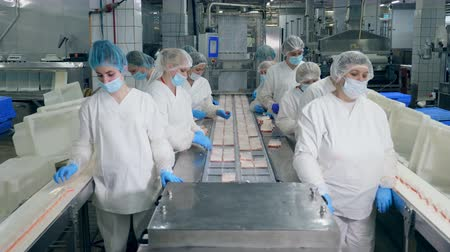 sanitair : Food factory unit with female employees at work Stockvideo